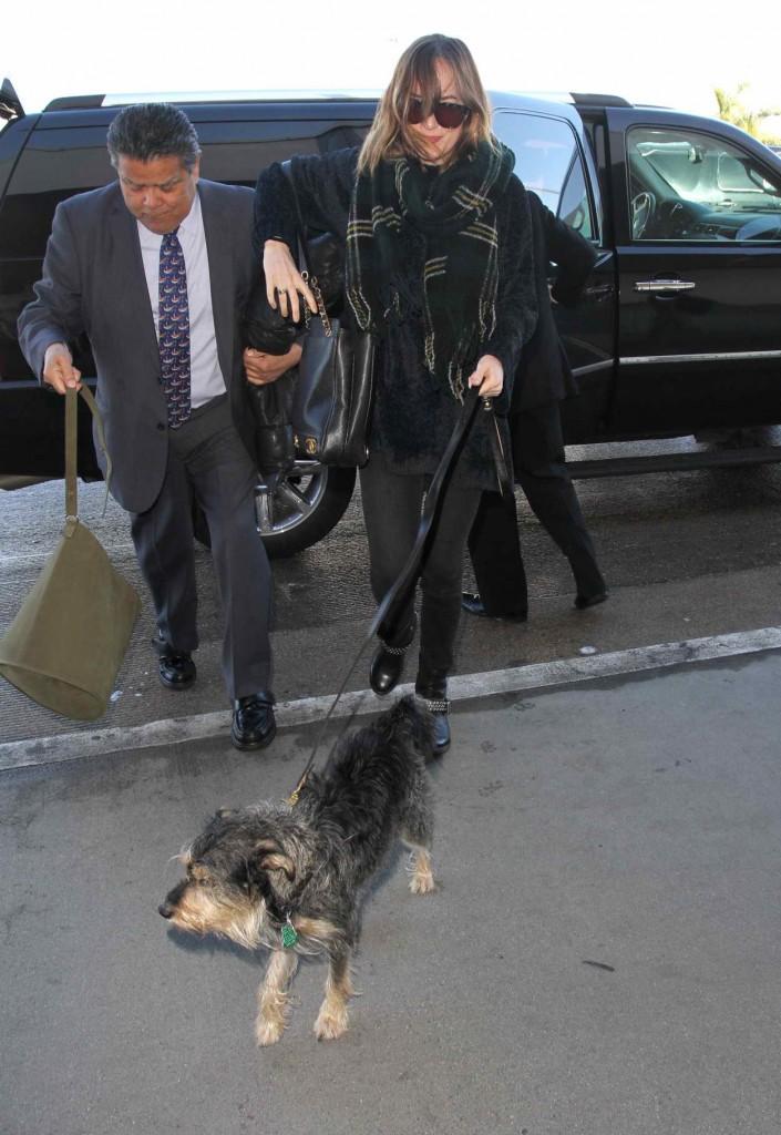 Dakota Johnson at LAX Airport in Los Angeles 01/07/2016-2