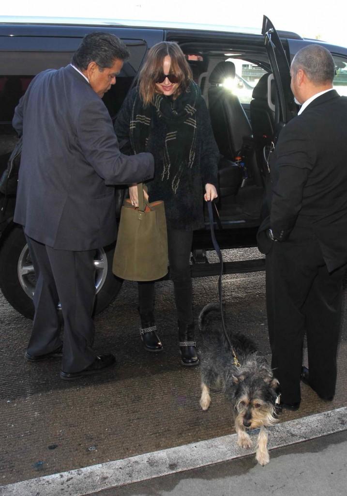 Dakota Johnson at LAX Airport in Los Angeles 01/07/2016-4