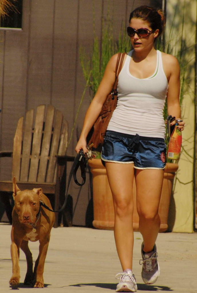Sophia Bush With Dog Out in West Hollywood 03/09/2016-1