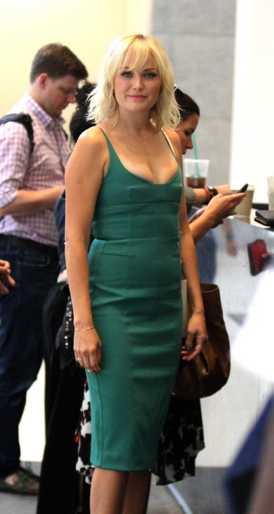 Malin Akerman Was Spotted Out in New York City 06/29/2016-1