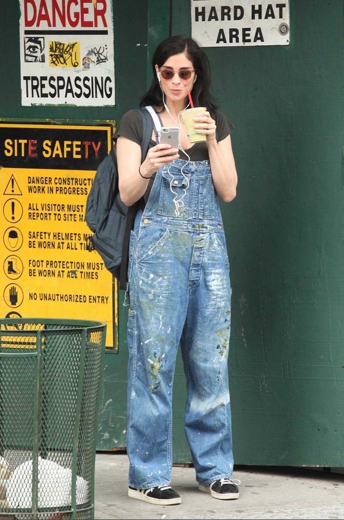 Sarah Silverman Was Seen Out in New York City 07/13/2016-1