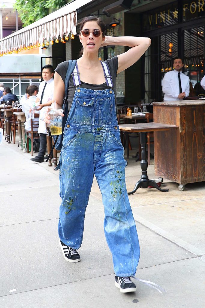 Sarah Silverman Was Seen Out in New York City 07/13/2016-4