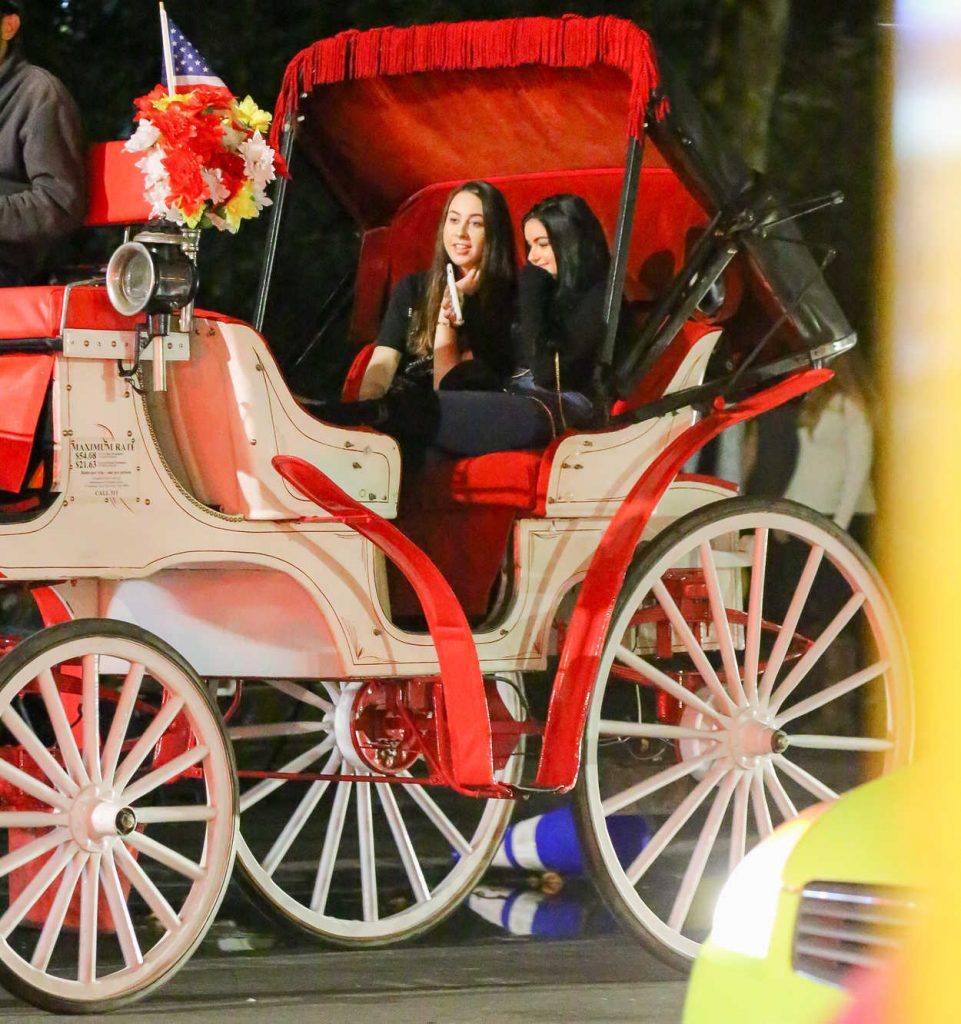 Ariel Winter Takes a Horse Carriage Ride in New York City 10/22/2016-1