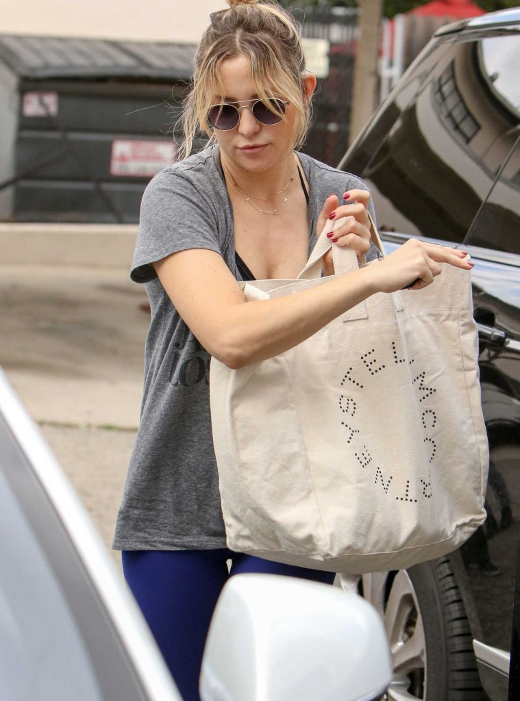Kate Hudson Goes Shopping in Los Angeles 11/26/2016-1