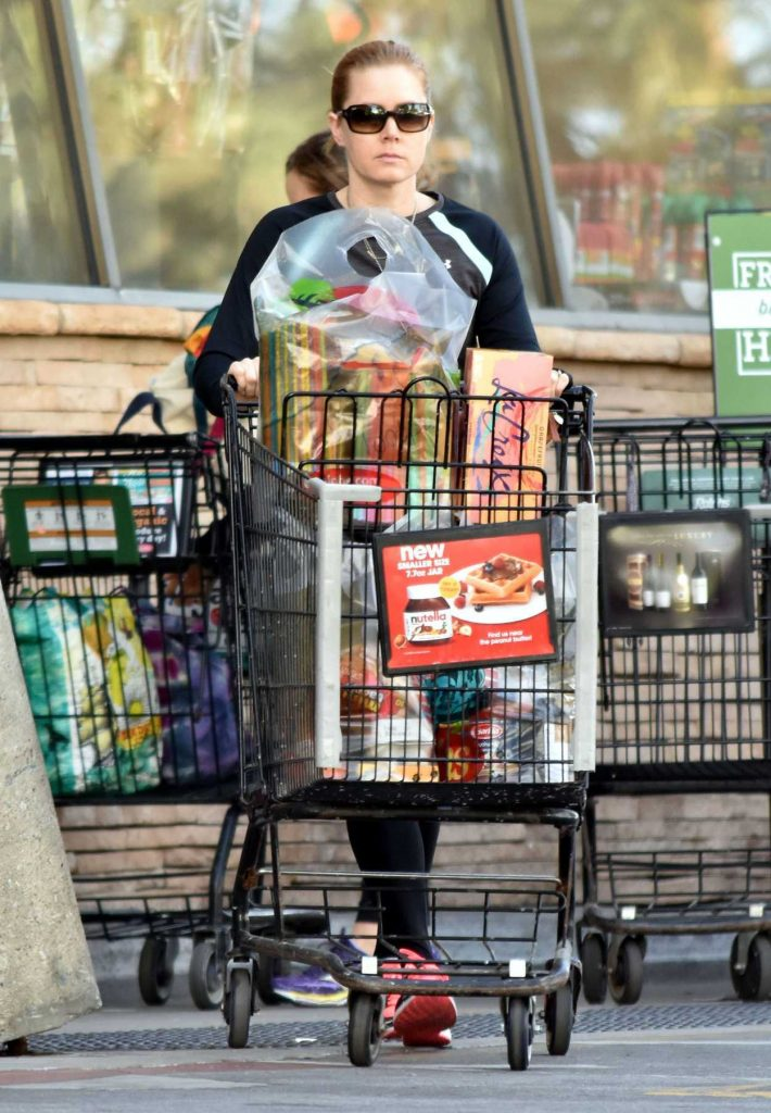 Amy Adams Goes Grocery Shopping in Studio City 12/01/2016-1
