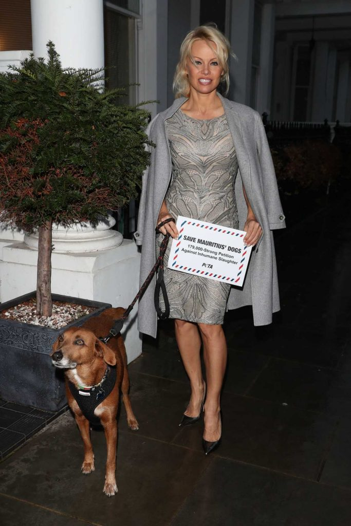 Pamela Anderson Hand Delivers a Petition to the High Comission of Mauritius in London 12/12/2016-3