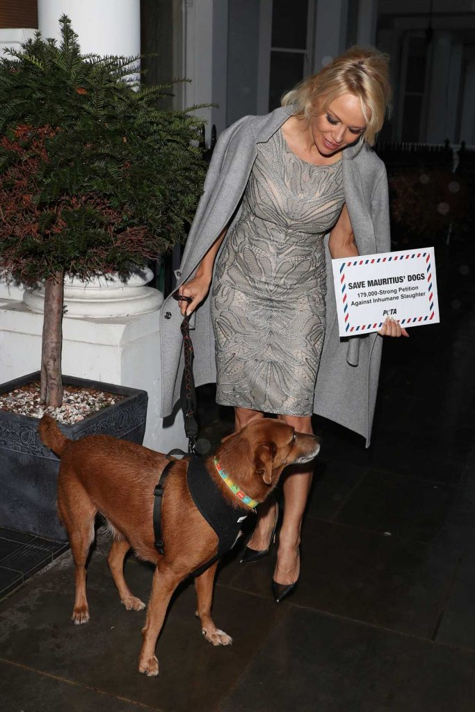 Pamela Anderson Hand Delivers a Petition to the High Comission of Mauritius in London 12/12/2016-4
