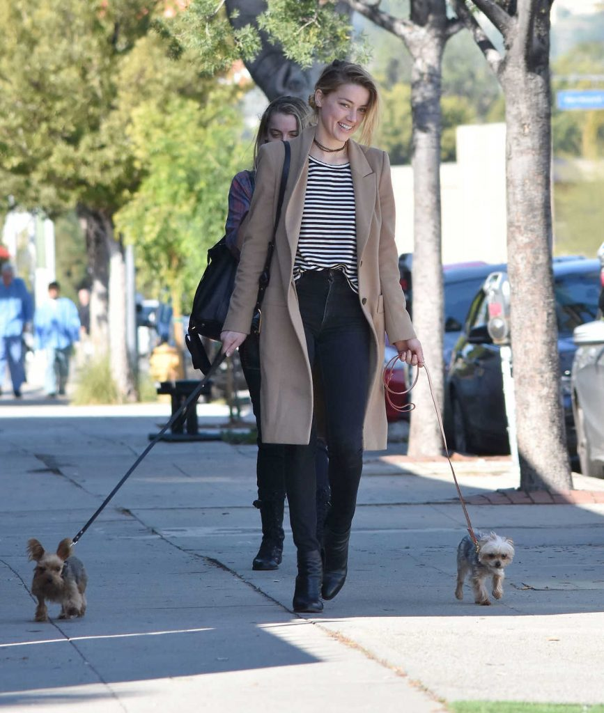 Amber Heard Was Seen Out in Los Feliz 01/26/2017-3