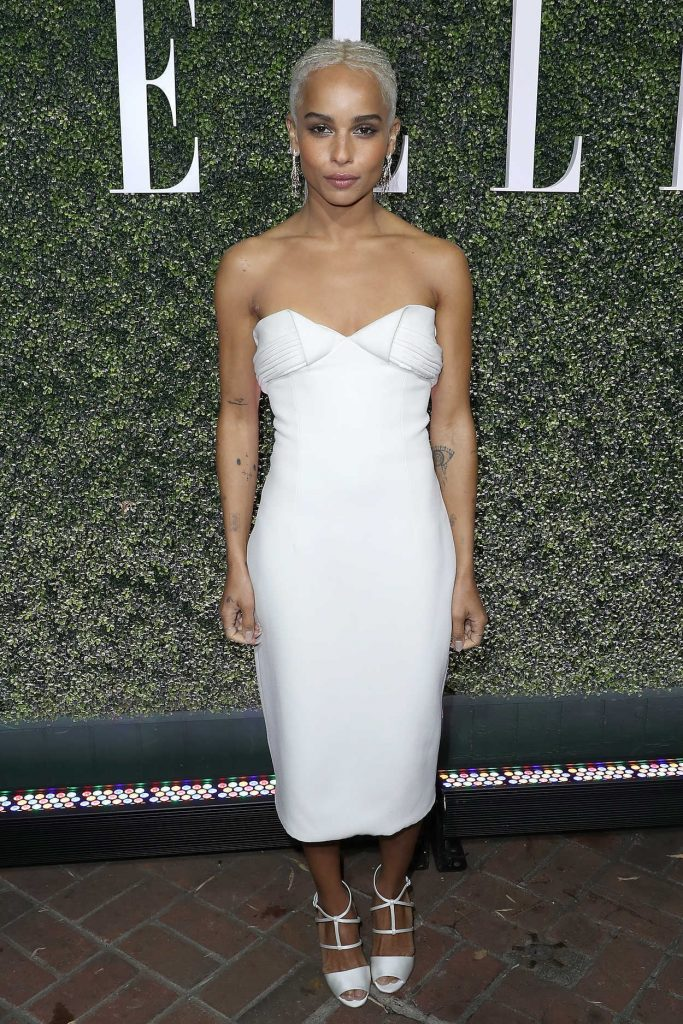 Zoe Kravitz at the 2017 ELLE Annual Women in Television Celebration in Los Angeles 01/14/2017-1