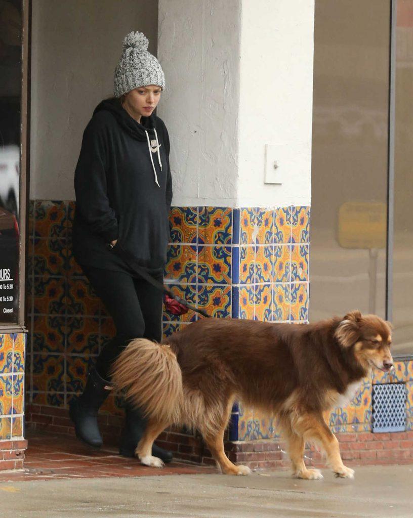 Amanda Seyfried Walks With Her Dog in Hollywood 02/06/2017-1