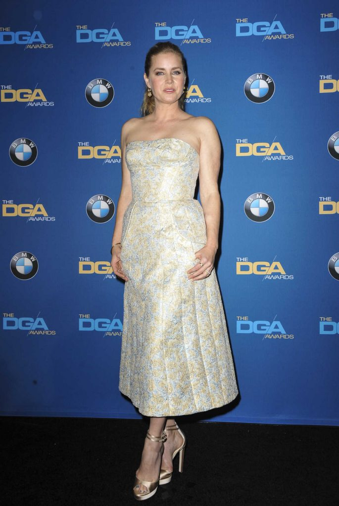 Amy Adams at the 69th Annual Directors Guild Awards in Los Angeles 02/04/2017-2