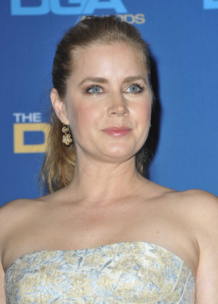 Amy Adams at the 69th Annual Directors Guild Awards in Los Angeles 02/04/2017-4