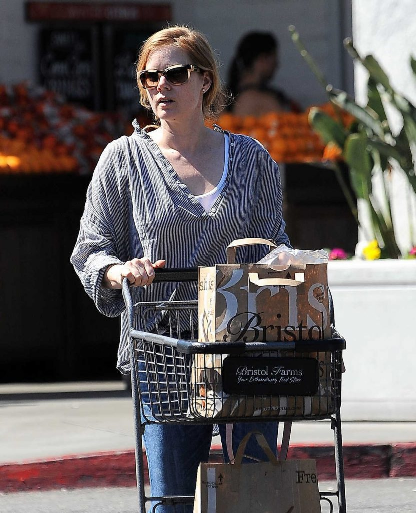 Amy Adams Does a Grocery Shopping in Los Angeles 03/15/2017-4
