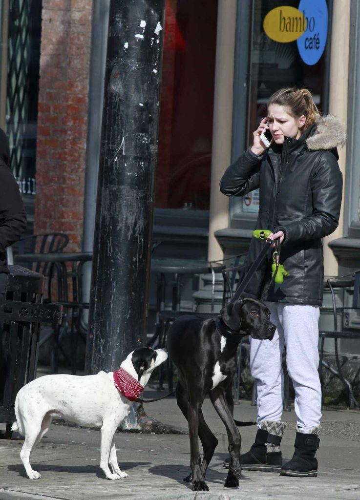 Melissa Benoist Was Seen Out in Vancouver 03/19/2017-5