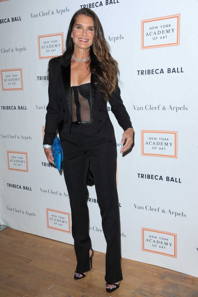 Brooke Shields at the New York Academy of Art Tribeca Ball 04/03/2017-1