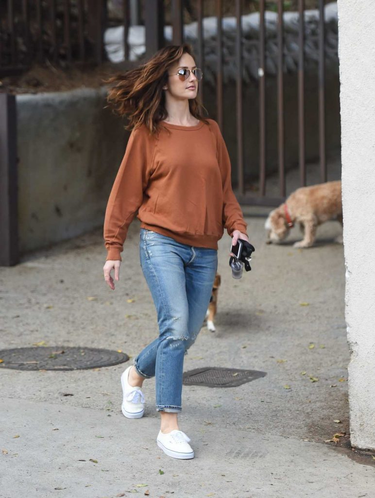 Minka Kelly Walks Her Dogs in Hollywood 05/26/2017-1