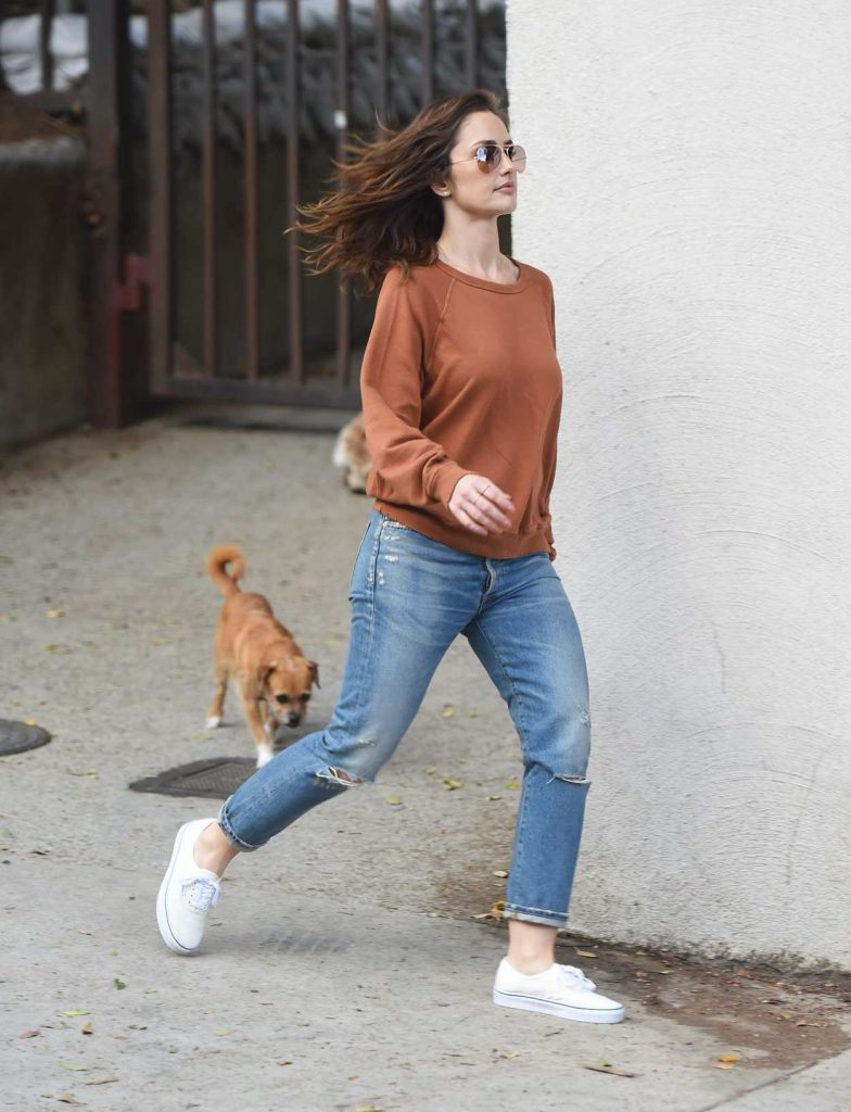 Minka Kelly Walks Her Dogs in Hollywood 05/26/2017-2