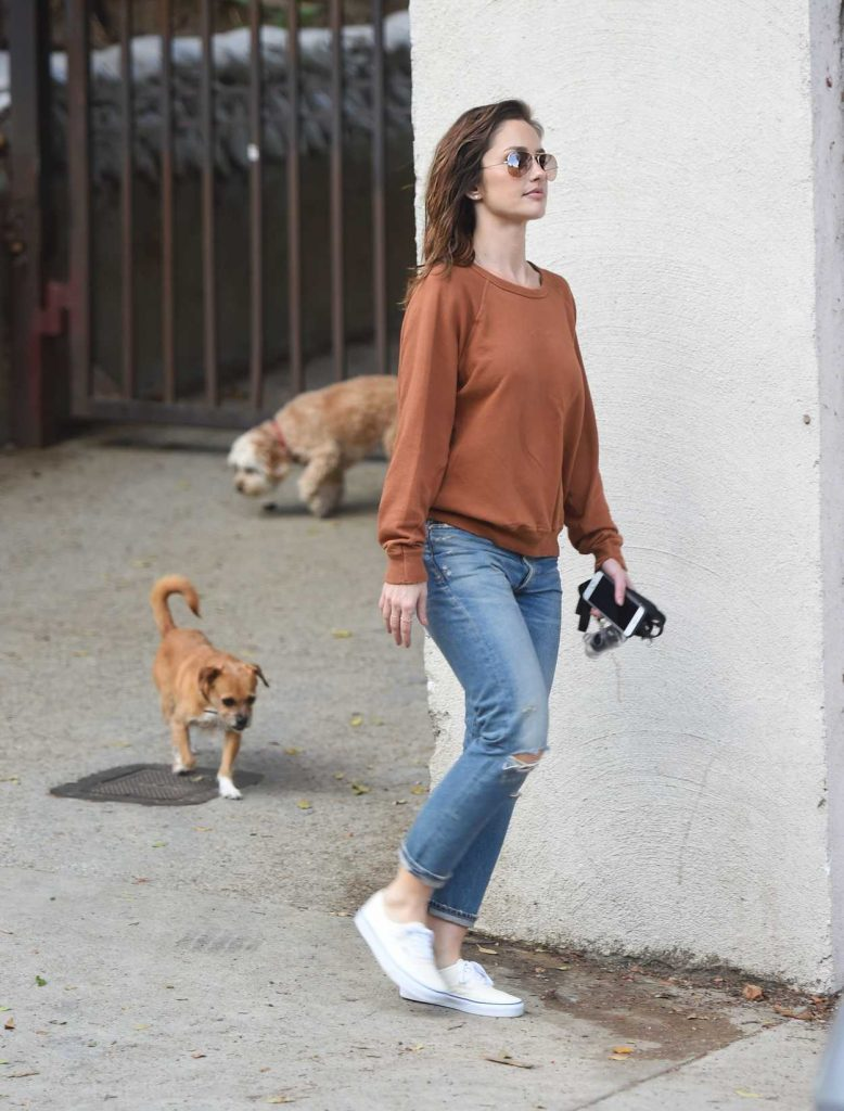 Minka Kelly Walks Her Dogs in Hollywood 05/26/2017-4