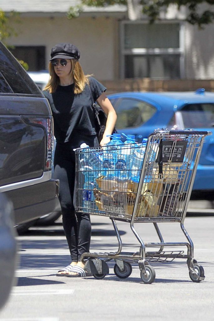 Ashley Tisdale Goes Shopping at Whole Foods in LA 06/18/2017-5
