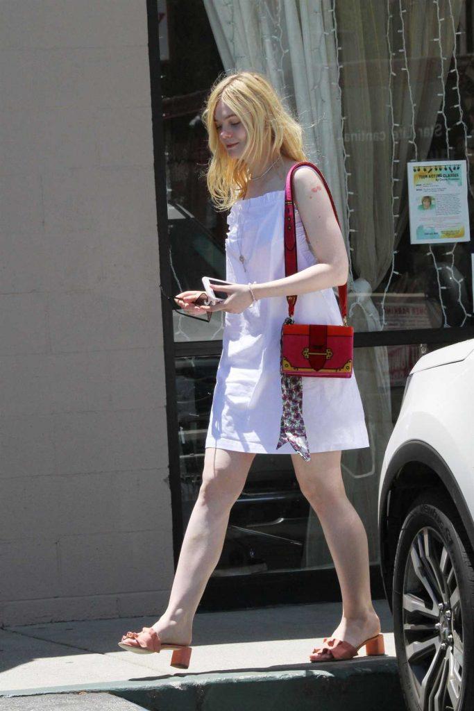 Elle Fanning Walks Her Dog Lewellen in LA 06/28/2017-3