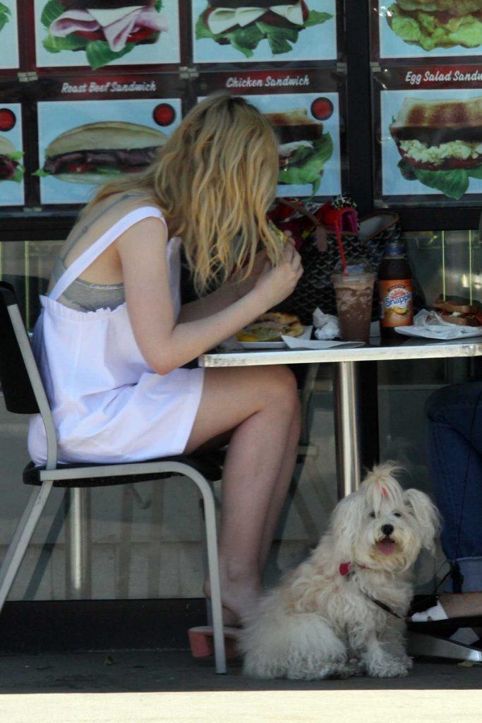 Elle Fanning Walks Her Dog Lewellen in LA 06/28/2017-5