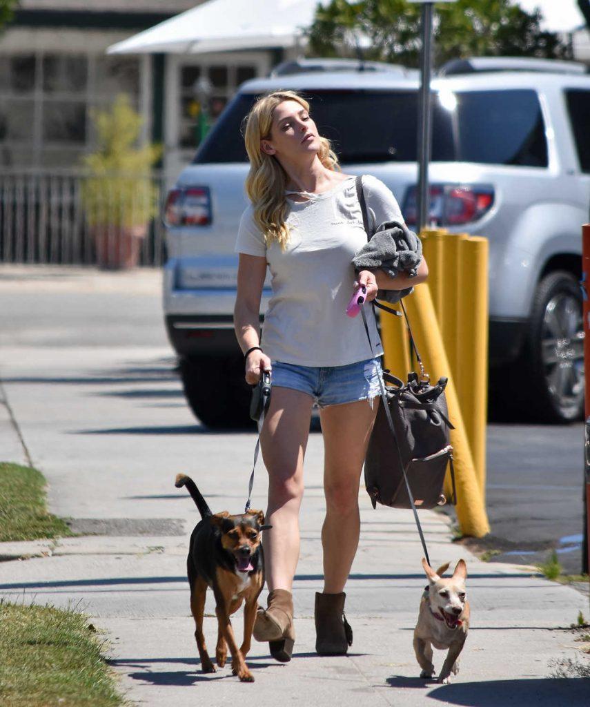 Ashley Greene Walks Her Dog in Los Angeles 07/02/2017-1