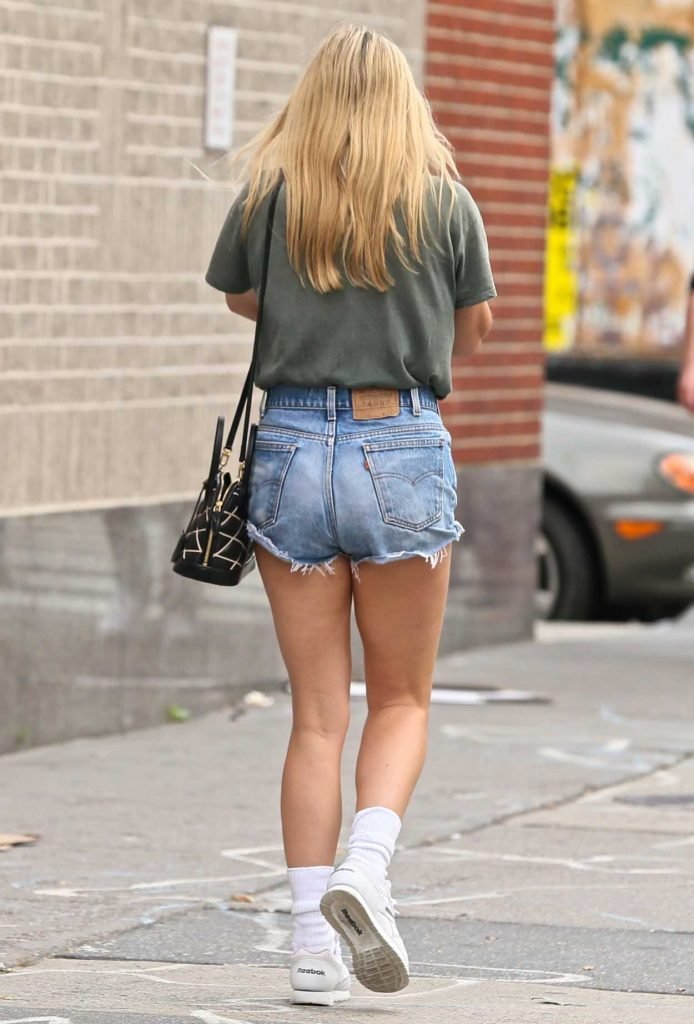 Chloe Sevigny Was Spotted in the East Village in New York City 07/05/2017-5