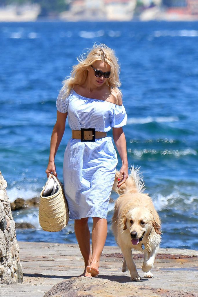 Pamela Anderson Walks Her Dog in St Tropez 06/29/2017-1