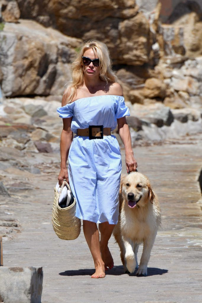 Pamela Anderson Walks Her Dog in St Tropez 06/29/2017-2
