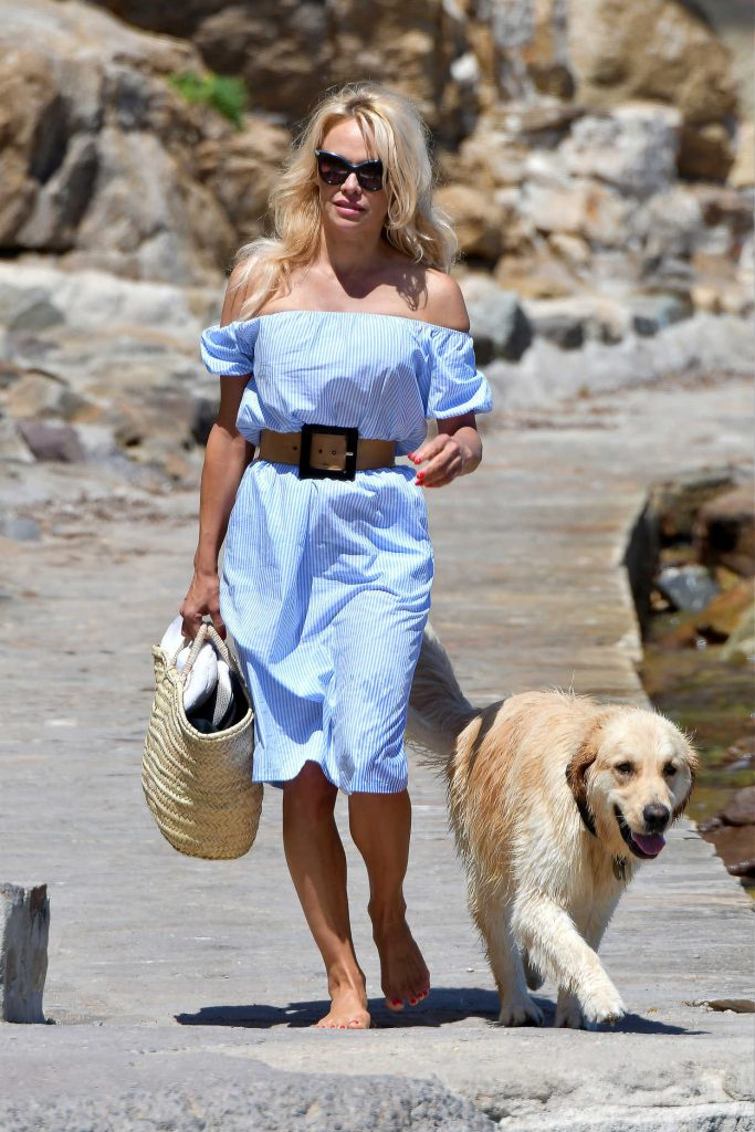 Pamela Anderson Walks Her Dog in St Tropez 06/29/2017-3
