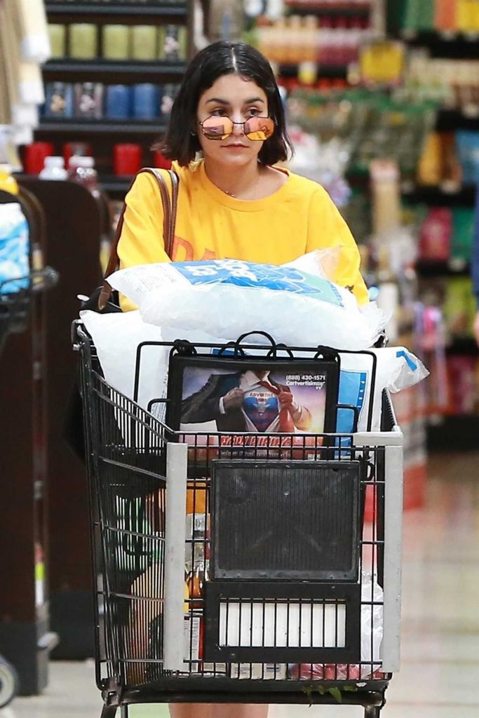Vanessa Hudgens Goes Shopping for Groceries in Studio City 07/15/2017-5