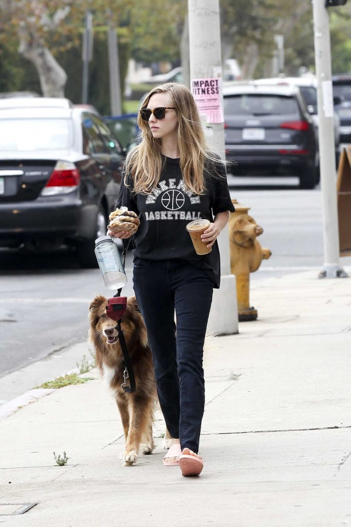 Amanda Seyfried Was Spotted With Her Dog Finn in Los Angeles 08/24/2017-1