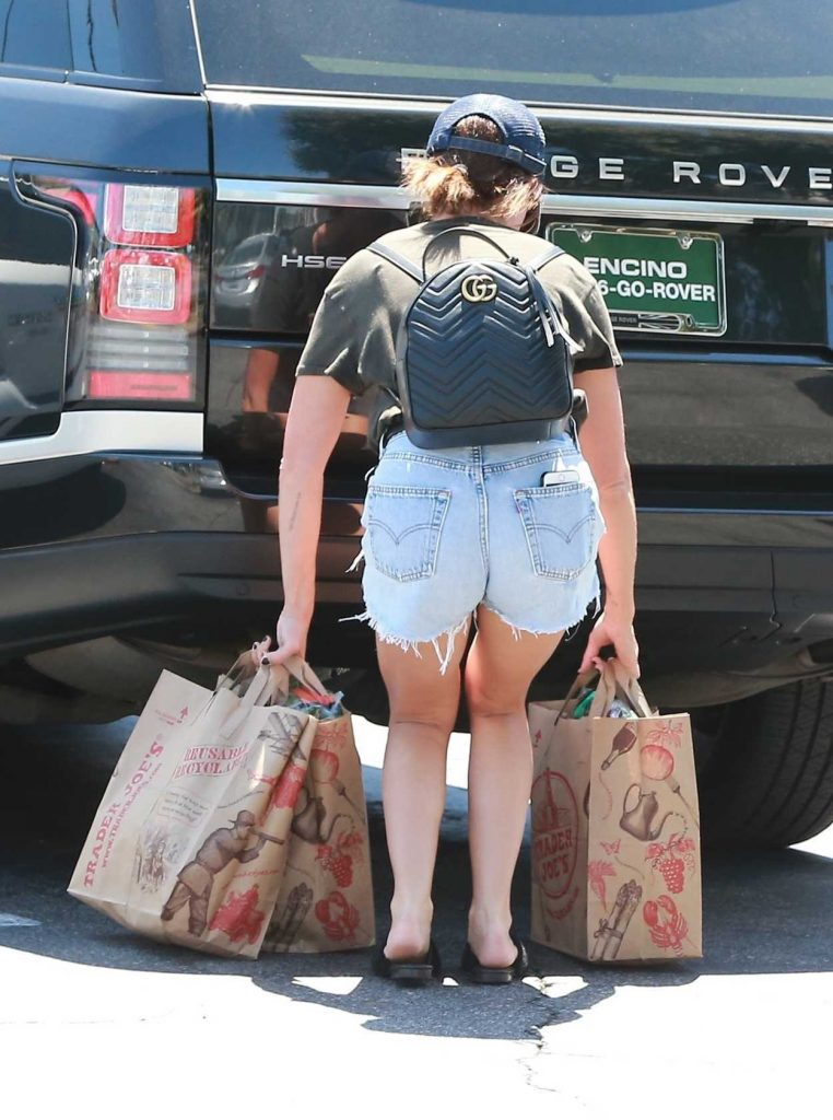 Ashley Tisdale Does Some Grocery Shopping in Studio City 08/19/2017-5