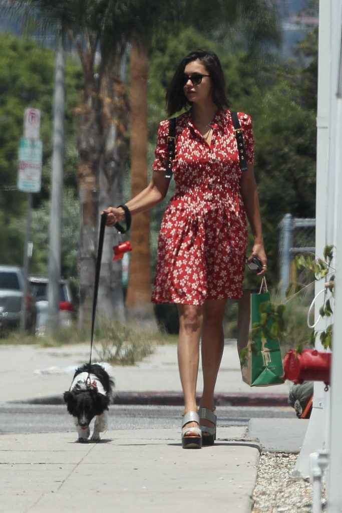 Nina Dobrev Walks With Her Dog Maverick Out in LA 08/07/2017-1