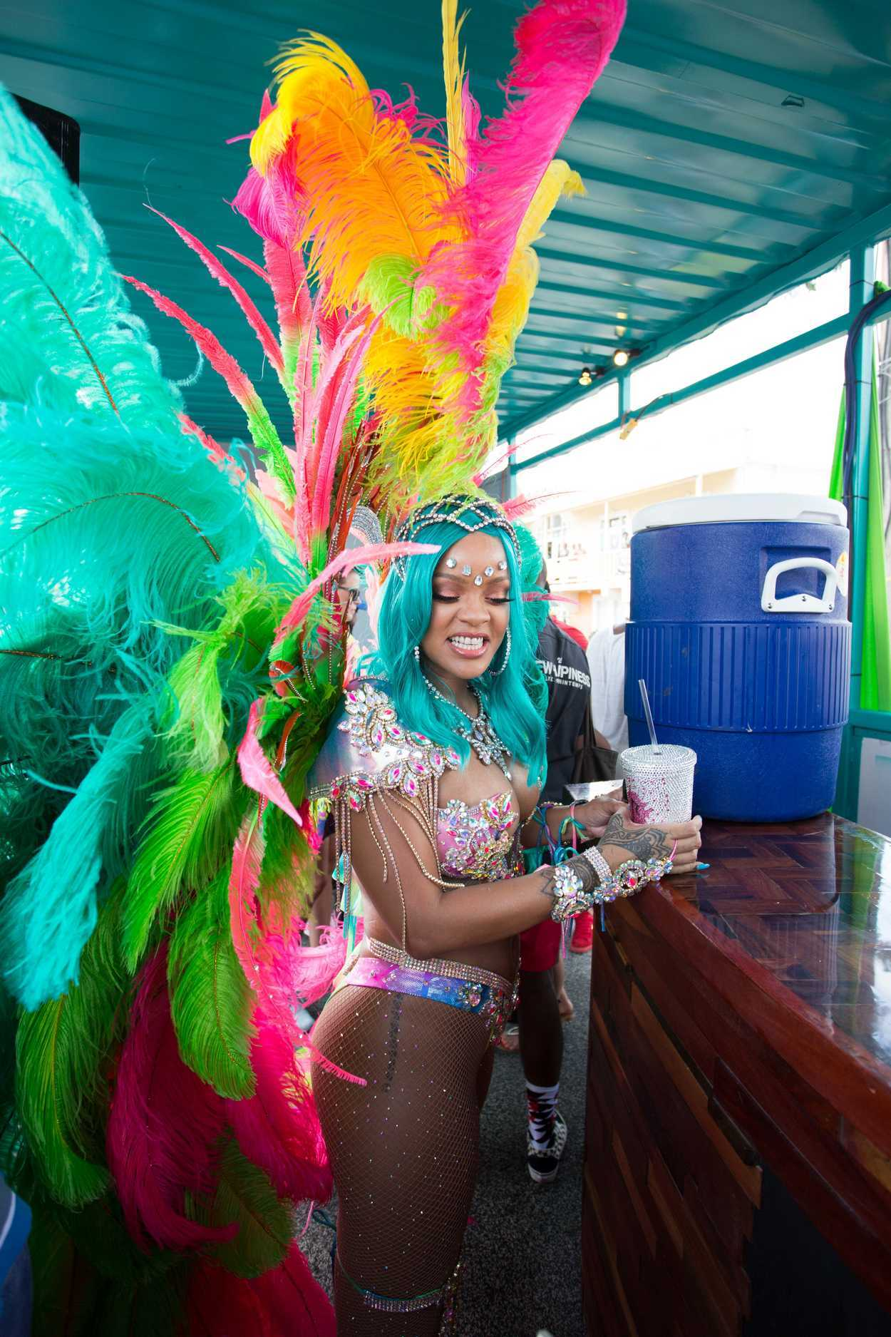 Think, that rihanna barbados carnival 2013 agree