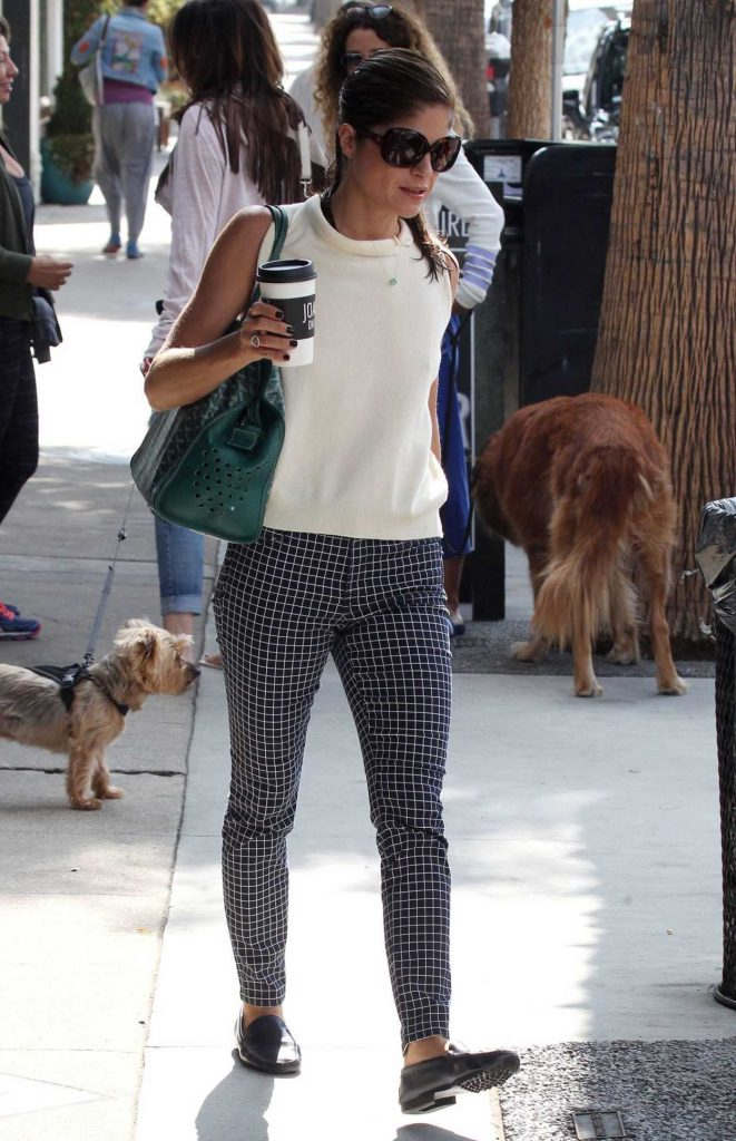 Selma Blair Was Seen With Her Dog Out in Los Angeles 09/20/2017-3