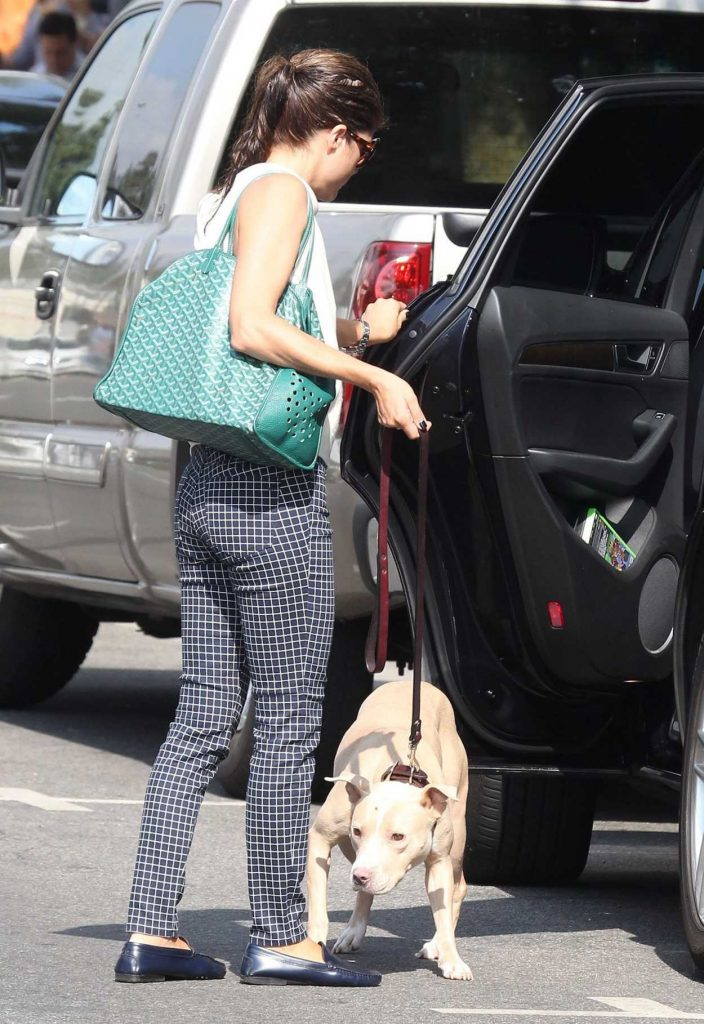 Selma Blair Was Seen With Her Dog Out in Los Angeles 09/20/2017-5
