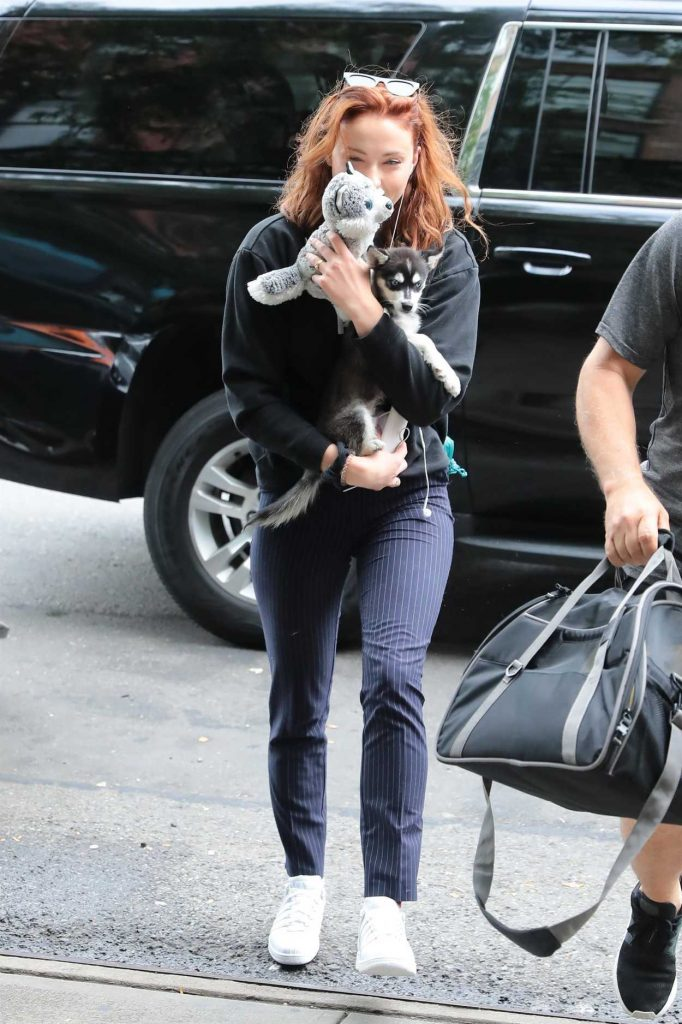 Sophie Turner Was Seen Out With Her Adorable Puppy Porky in NYC 09/14/2017-1