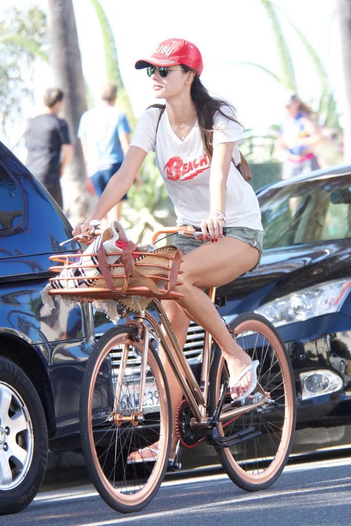 Alessandra Ambrosio Rides Her Bicycle in Santa Monica 11/23/2017-1