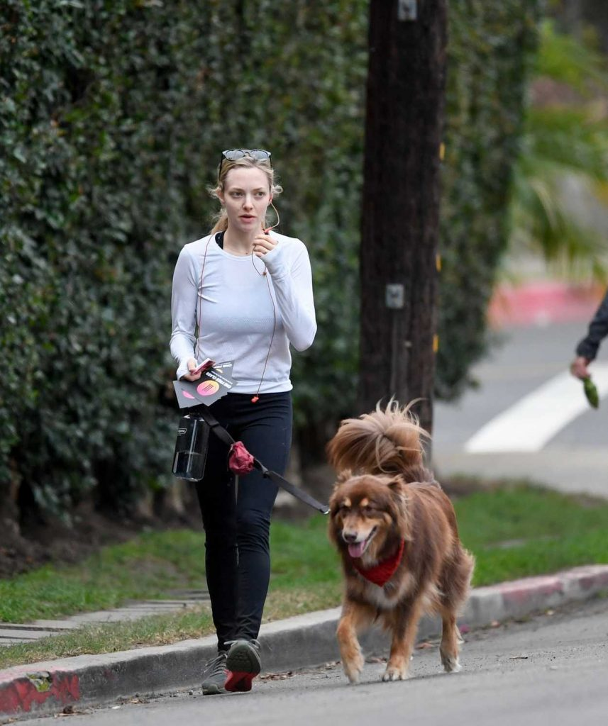 Amanda Seyfried Takes Her Dog Finn for a Hike at Runyon Canyon in Los Angeles 11/28/2017-1