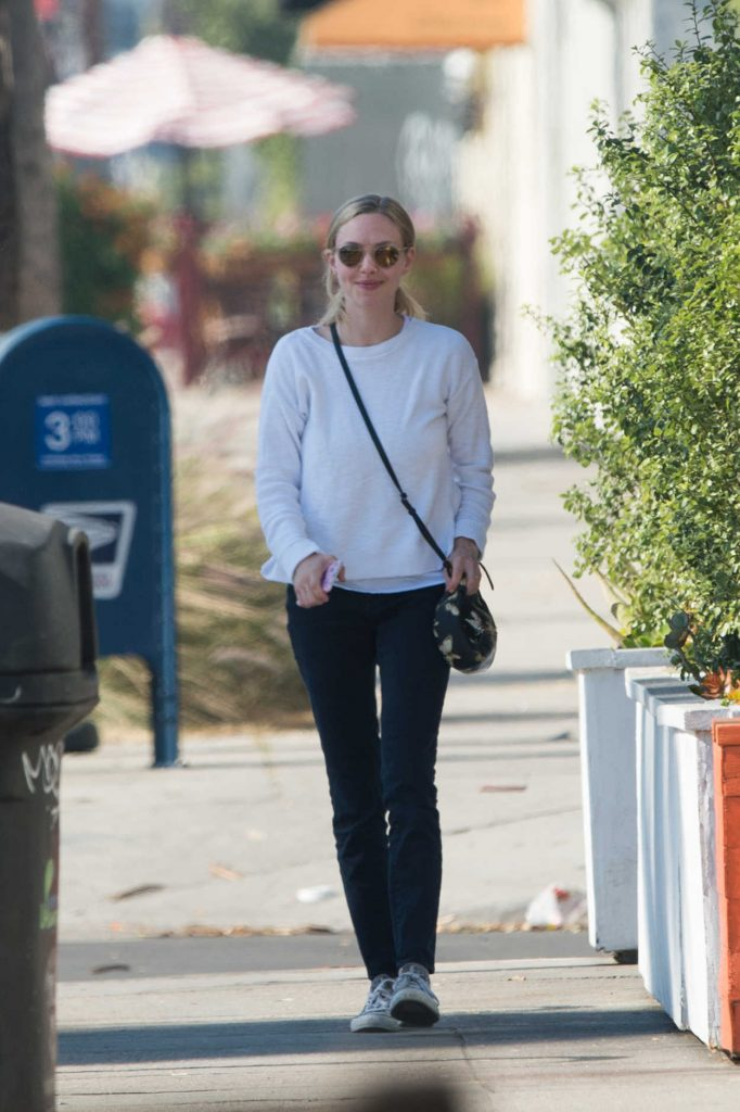 Amanda Seyfried Was Seen Out in Los Angeles 12/06/2017-1
