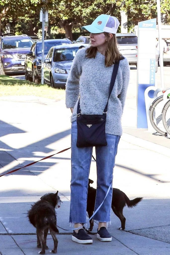 Calista Flockhart Drops Her Dogs off at a Pet Boutique in Brentwood 12/16/2017-1