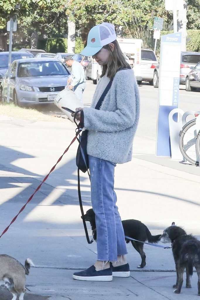 Calista Flockhart Drops Her Dogs off at a Pet Boutique in Brentwood 12/16/2017-2
