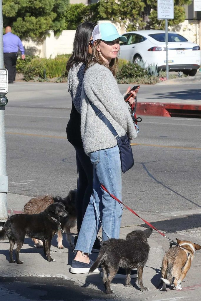 Calista Flockhart Drops Her Dogs off at a Pet Boutique in Brentwood 12/16/2017-3