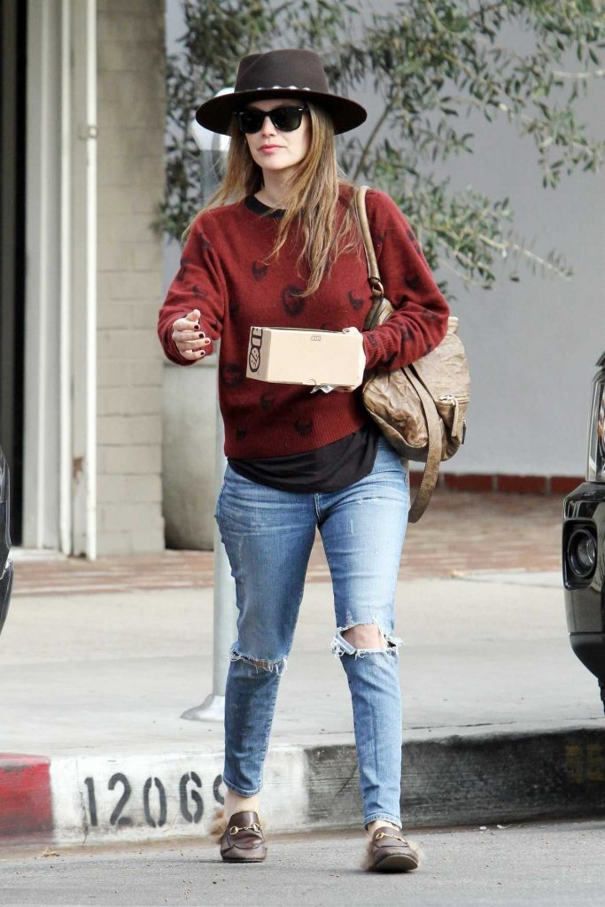 Rachel Bilson Was Seen Out in Los Angeles 12/23/2017-2