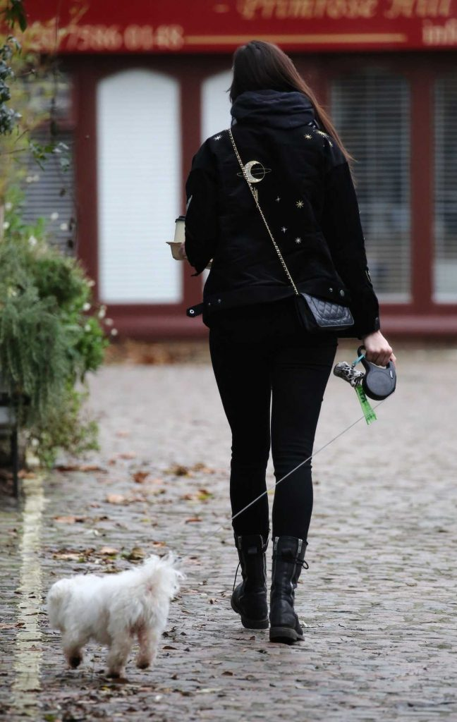 Daisy Lowe Walks Her Dog in Primrose Hill in London 12/30/2017-5