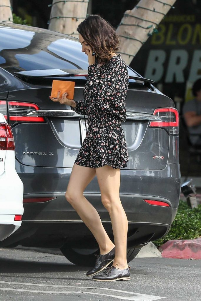 Mila Kunis Was Spotted Out in Bel Air 01/30/2018-5