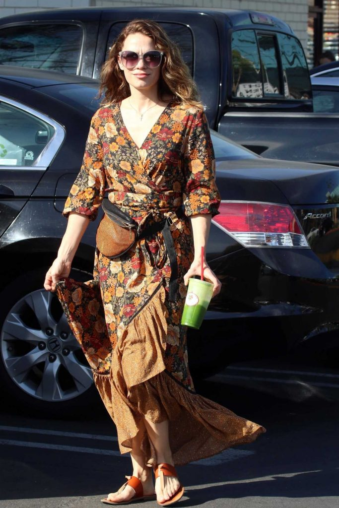 Bethany Joy Lenz Was Spotted Out in Studio City 02/02/2018-2