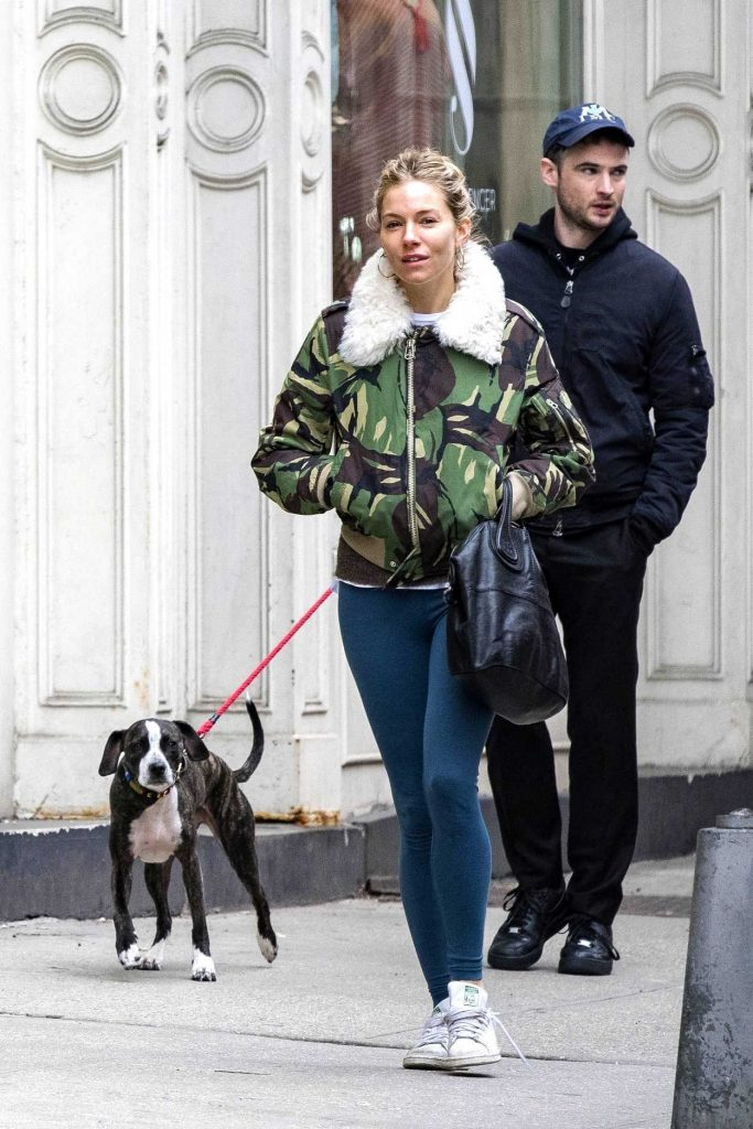 Sienna Miller Was Seen Out with Tom Sturridge in West Village, New York 02/26/2018-1