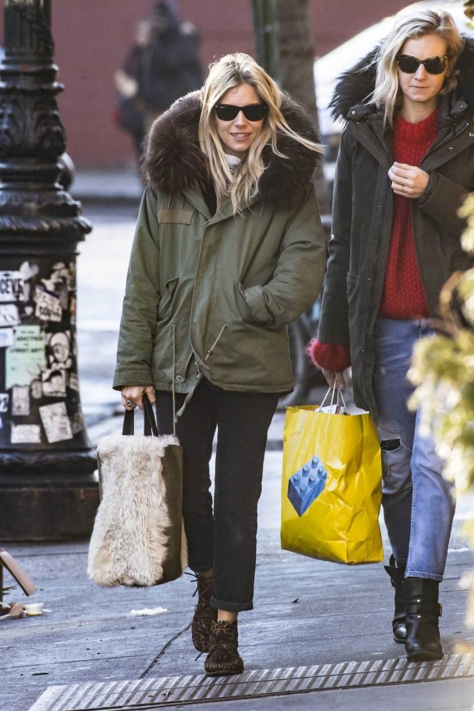 Sienna Miller Was Spotted Out in New York City 02/04/2018-1